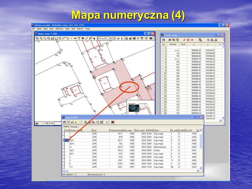 Mapa numeryczna (4)