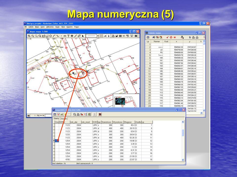 Mapa numeryczna (5)