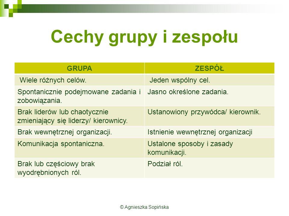 Cechy grupy i zespołu GRUPAZESPÓŁ Wiele różnych celów.
