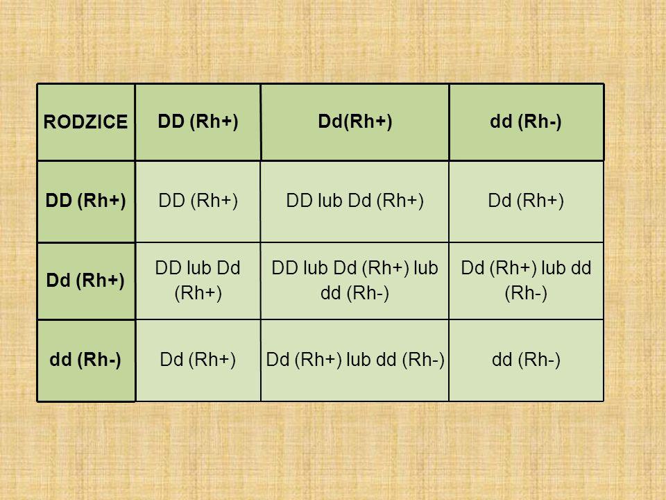 RODZICEDD (Rh+)Dd(Rh+)dd (Rh-) DD (Rh+) DD lub Dd (Rh+)Dd (Rh+) DD lub Dd (Rh+) DD lub Dd (Rh+) lub dd (Rh-) Dd (Rh+) lub dd (Rh-) dd (Rh-)D