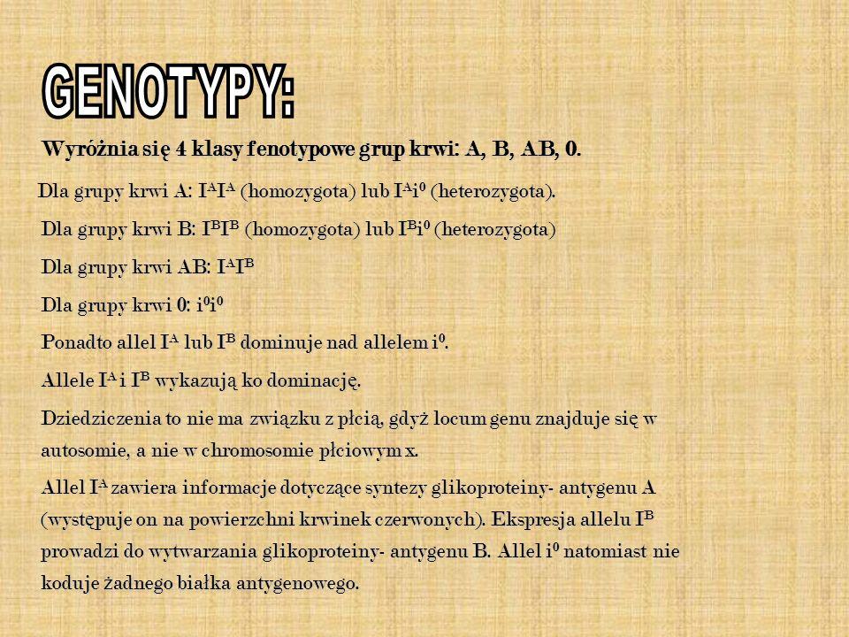 Wyró ż nia si ę 4 klasy fenotypowe grup krwi: A, B, AB, 0. Dla grupy krwi A: I A I A (homozygota) lub I A i 0 (heterozygota). Dla grupy krwi A: I A I