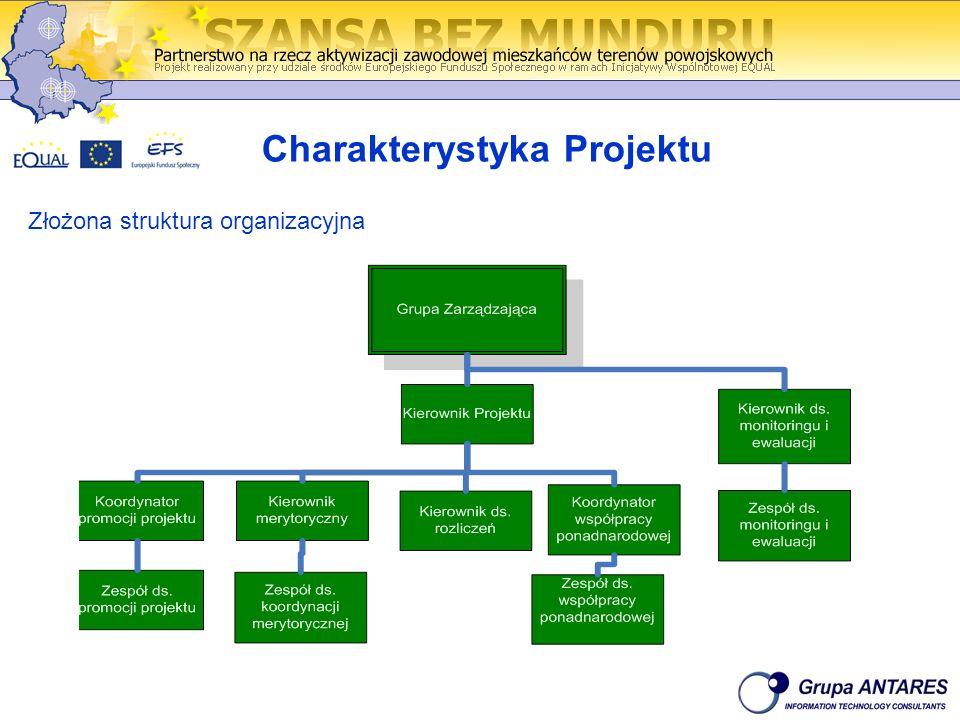 Charakterystyka Projektu Złożona struktura organizacyjna
