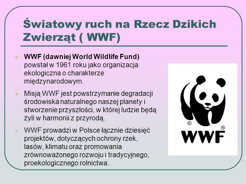 Światowy ruch na Rzecz Dzikich Zwierząt ( WWF) WWF (dawniej World Wildlife Fund) powstał w 1961 roku jako organizacja ekologiczna o charakterze międzynarodowym.