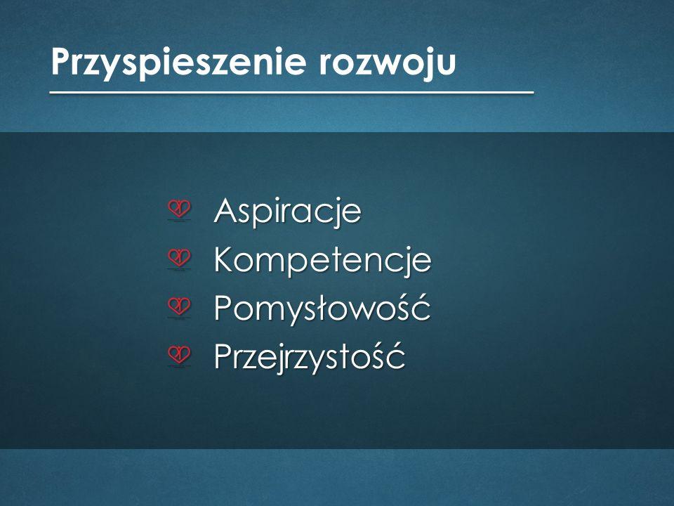 dr hab.Zbigniew Borysiuk profesor Politechniki Opolskiej dr hab.
