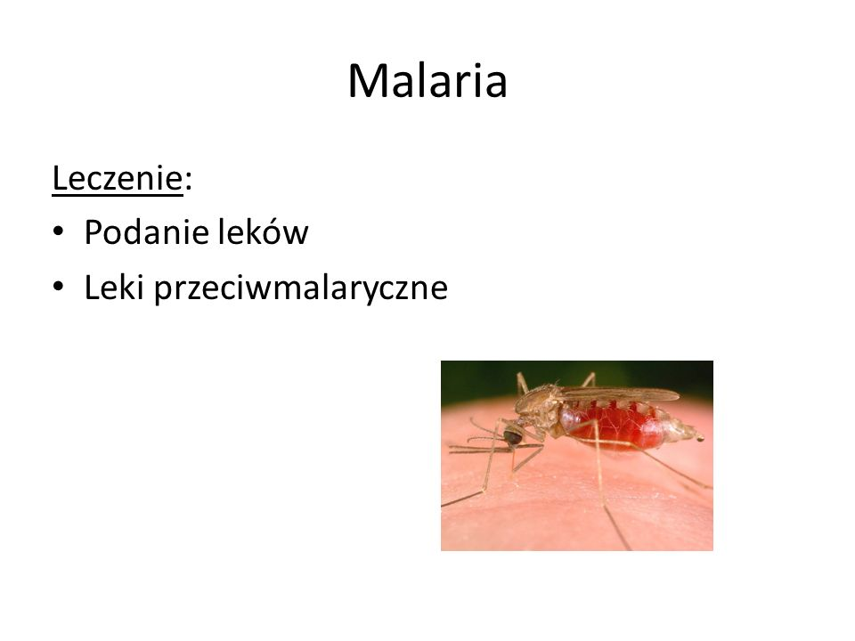 Malaria Leczenie: Podanie leków Leki przeciwmalaryczne