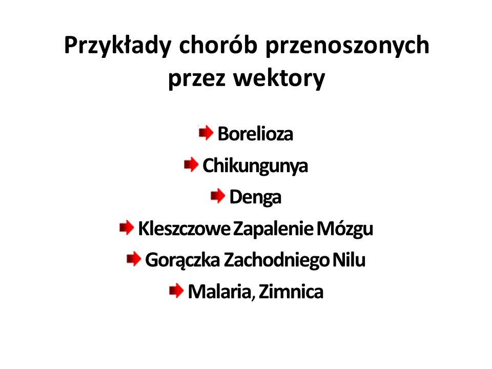 Przykłady chorób przenoszonych przez wektory Borelioza Chikungunya Denga Kleszczowe Zapalenie Mózgu Gorączka Zachodniego Nilu Malaria, Zimnica