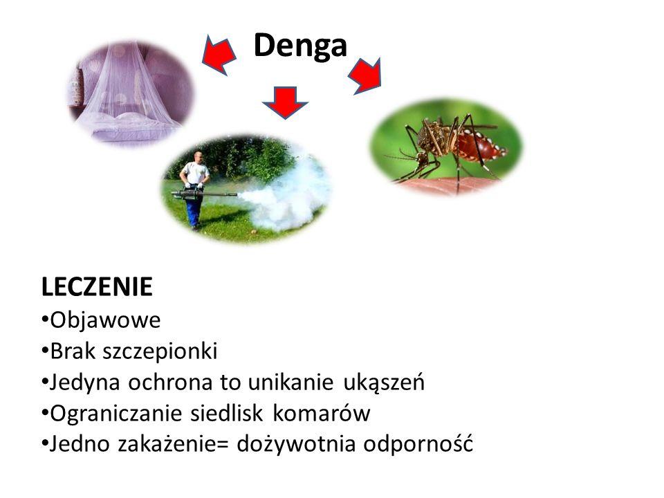 Denga LECZENIE Objawowe Brak szczepionki Jedyna ochrona to unikanie ukąszeń Ograniczanie siedlisk komarów Jedno zakażenie= dożywotnia odporność
