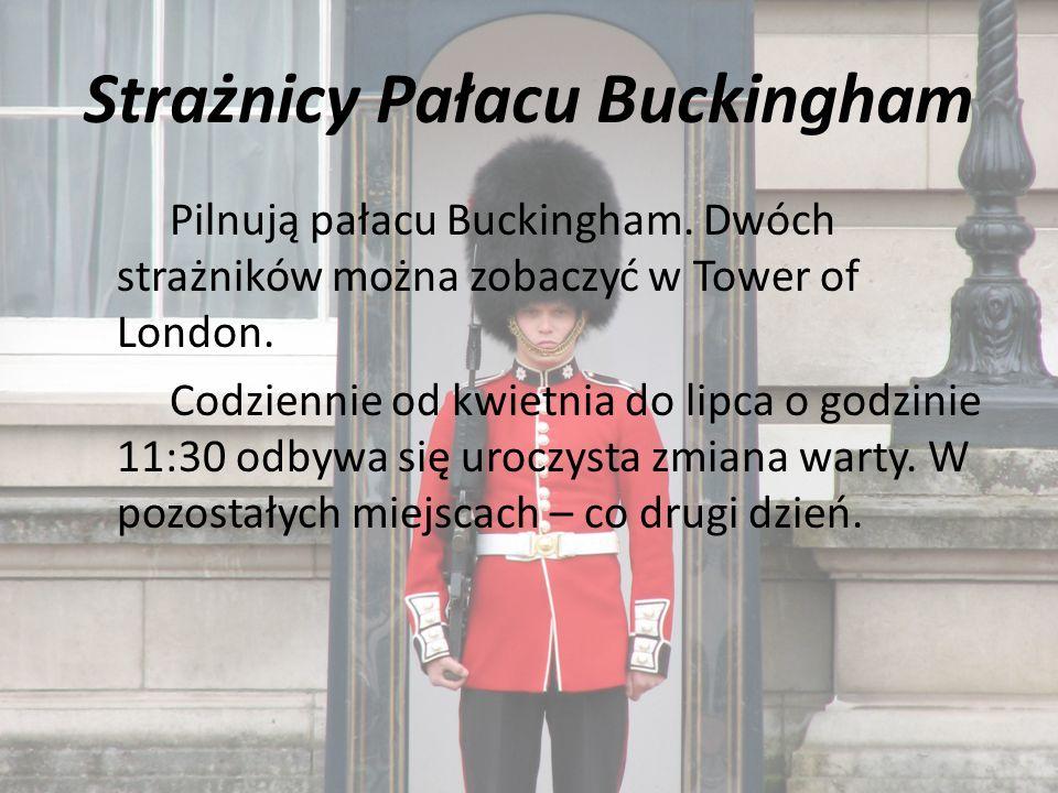 Strażnicy Pałacu Buckingham Pilnują pałacu Buckingham.