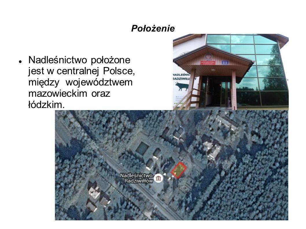 Położenie Nadleśnictwo położone jest w centralnej Polsce, między województwem mazowieckim oraz łódzkim.