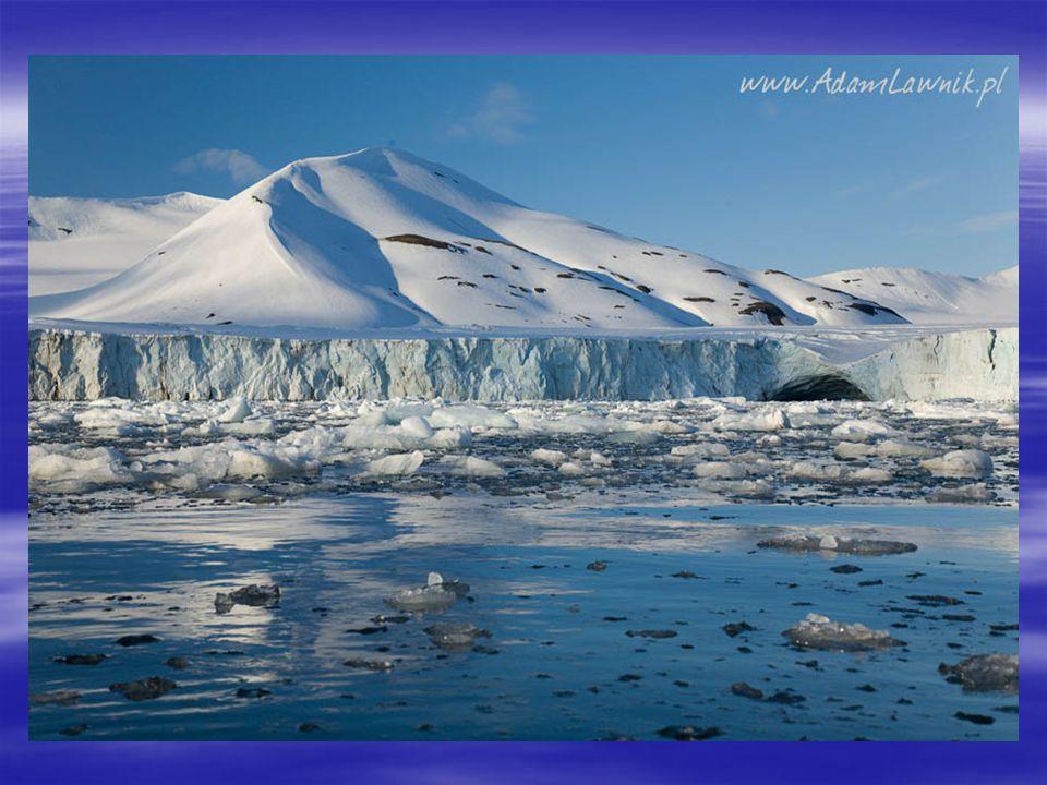 Warunki powstawania lodowców  Lodowce powstają tam, gdzie ukształtowanie terenu sprzyja gromadzeniu się dużej ilości śniegu, a jednocześnie jest zbyt chłodno, aby cały zgromadzony śnieg topił się w ciągu lata.