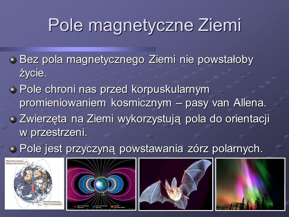 Bez pola magnetycznego Ziemi nie powstałoby życie. Pole chroni nas przed korpuskularnym promieniowaniem kosmicznym – pasy van Allena. Zwierzęta na Zie