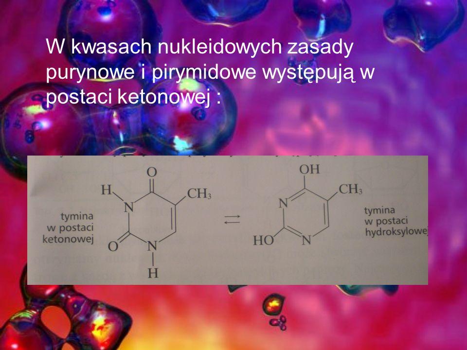 W kwasach nukleidowych zasady purynowe i pirymidowe występują w postaci ketonowej :