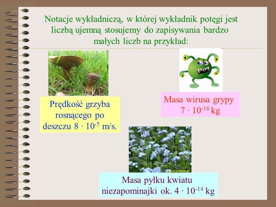 Notacje wykładniczą, w której wykładnik potęgi jest liczbą ujemną stosujemy do zapisywania bardzo małych liczb na przykład: Prędkość grzyba rosnącego po deszczu 8 · 10 -5 m/s.