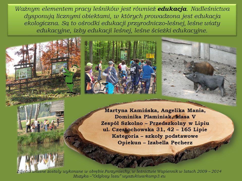 Ważnym elementem pracy leśników jest również edukacja.