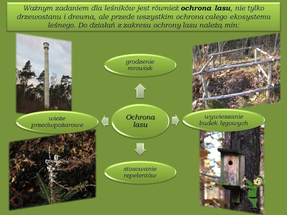 Ochrona lasu grodzenie mrowisk wywieszanie budek lęgowych stosowanie repelentów wieże przeciwpożarowe Ważnym zadaniem dla leśników jest również ochrona lasu, nie tylko drzewostanu i drewna, ale przede wszystkim ochrona całego ekosystemu leśnego.