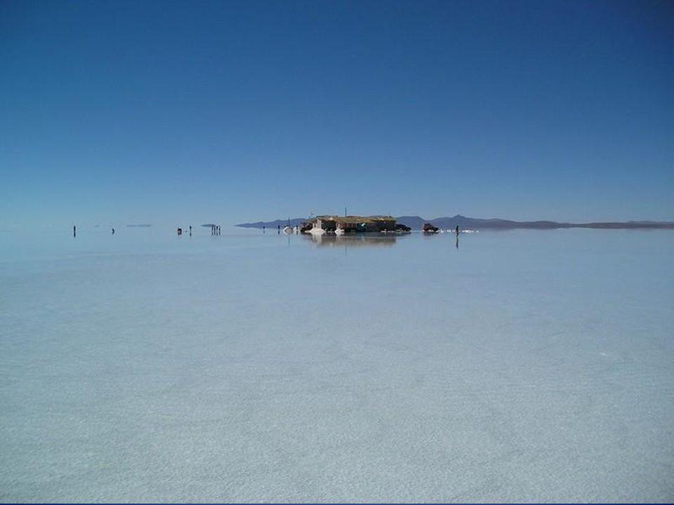 Es sind etwa 11 Schichten Salz die zwischen 2 und 10 Meter dick sind. Die oberflächliche Kruste ist etwa 10 Meter tiefwährend die maximale Tiefe des S