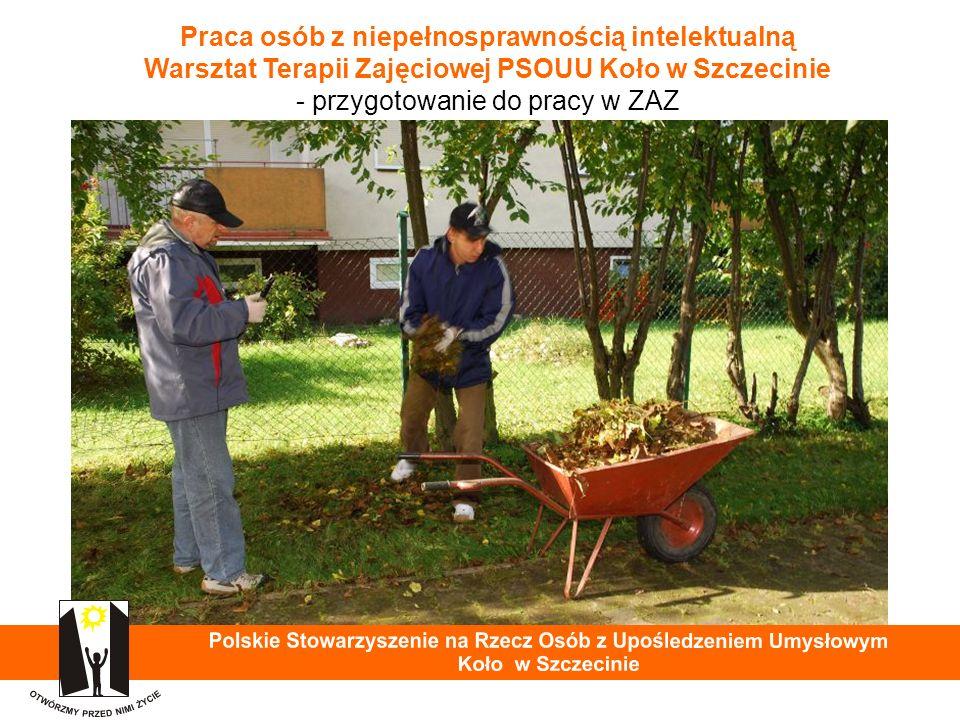 Praca osób z niepełnosprawnością intelektualną Warsztat Terapii Zajęciowej PSOUU Koło w Szczecinie - przygotowanie do pracy w ZAZ 34