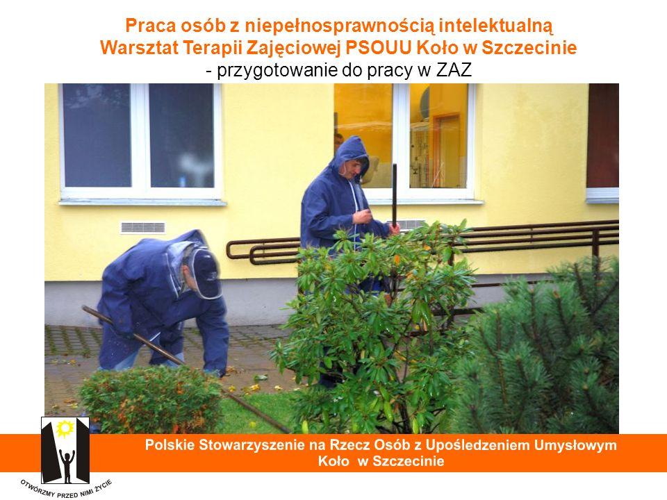 Praca osób z niepełnosprawnością intelektualną Warsztat Terapii Zajęciowej PSOUU Koło w Szczecinie - przygotowanie do pracy w ZAZ 35
