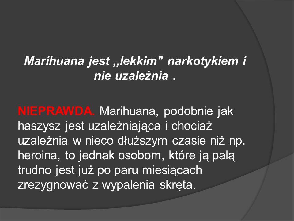 Marihuana jest,,lekkim narkotykiem i nie uzależnia.