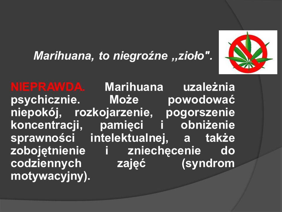 Marihuana, to niegroźne,,zioło .NIEPRAWDA. Marihuana uzależnia psychicznie.