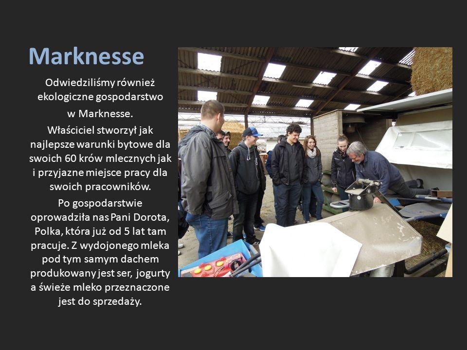 Marknesse Odwiedziliśmy również ekologiczne gospodarstwo w Marknesse. Właściciel stworzył jak najlepsze warunki bytowe dla swoich 60 krów mlecznych ja