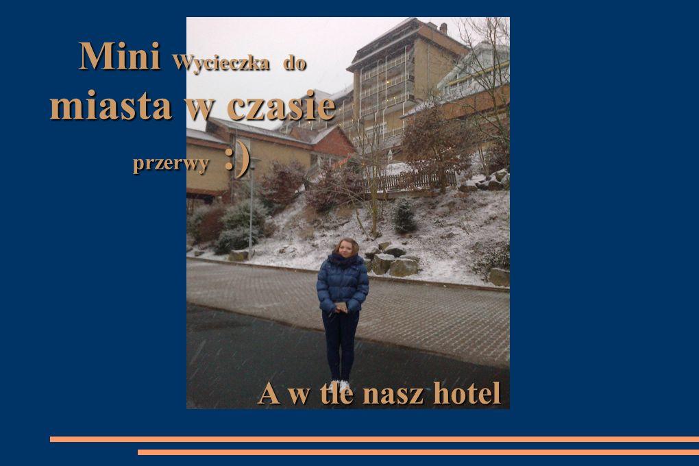 Hotel Göbel´s Rodenberg Rotenburg