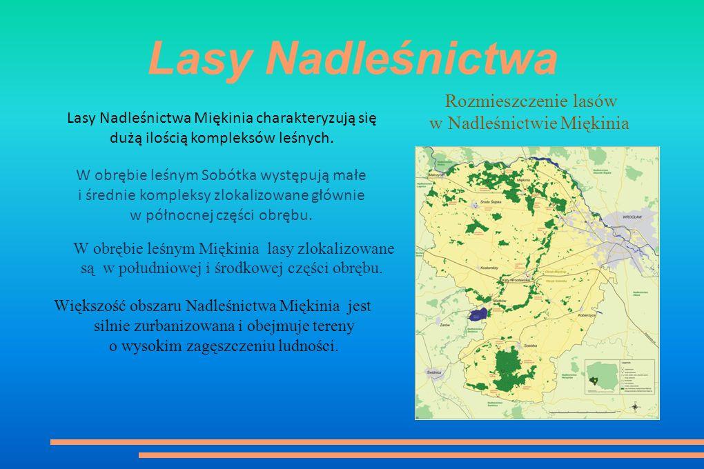 Nadleśnictwo dawniej i dziś Wcześniej lasy, które weszły w skład obu Nadleśnictw stanowiły własność państwową, chłopską lub komunalną miasta Wrocław.