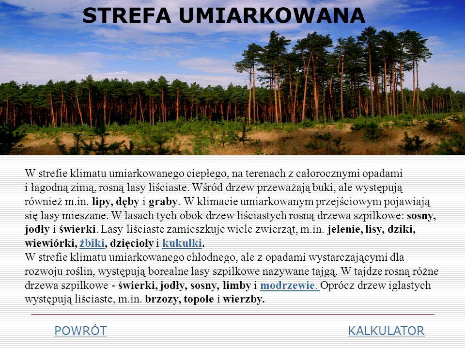 STREFA PODZWROTNIKOWA KALKULATOR Lasy i zarośla twardolistne W strefie klimatu podzwrotnikowego występują lasy i zarośla twardolistne.