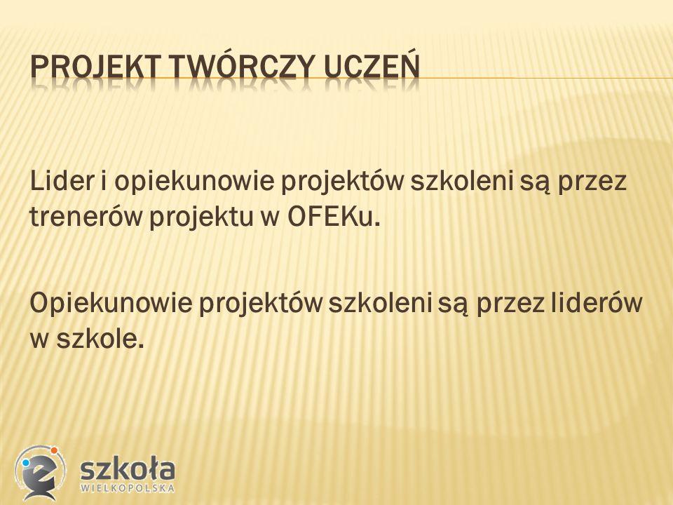 Lider i opiekunowie projektów szkoleni są przez trenerów projektu w OFEKu.