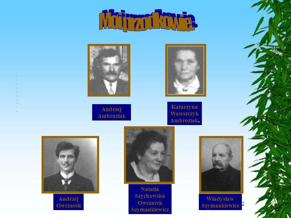 2 Andrzej Ambroziak Katarzyna Wawszczyk Ambroziak.