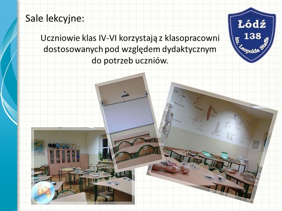 Sale lekcyjne: Uczniowie klas IV-VI korzystają z klasopracowni dostosowanych pod względem dydaktycznym do potrzeb uczniów.