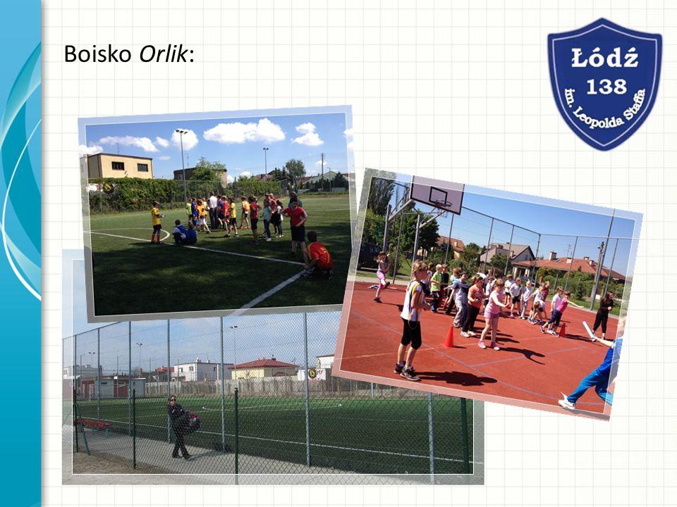 Boisko Orlik: