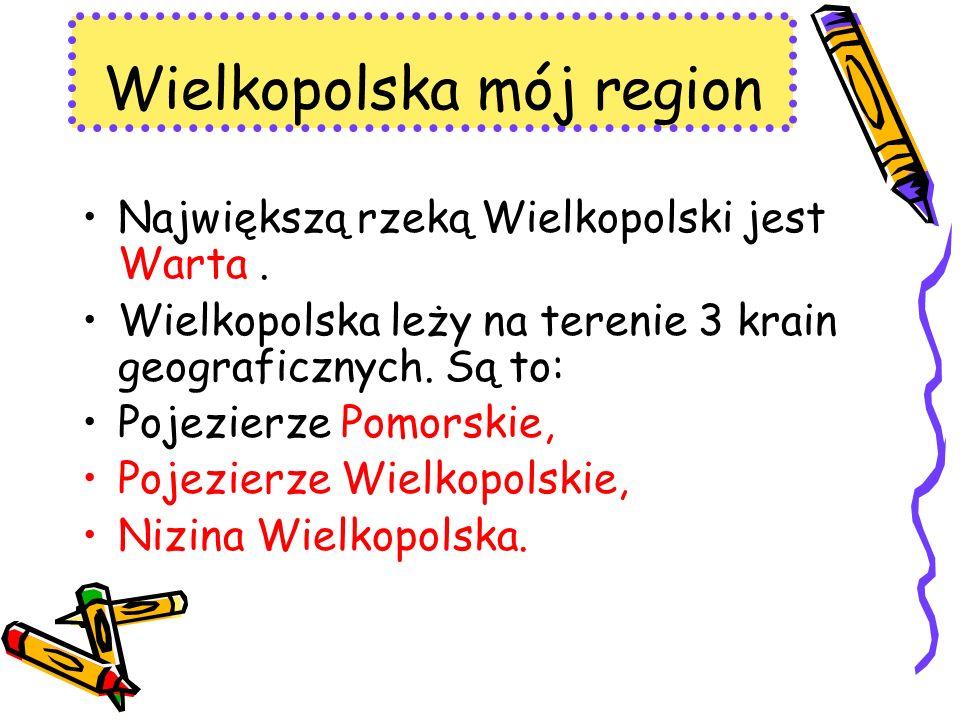 Największą rzeką Wielkopolski jest Warta. Wielkopolska leży na terenie 3 krain geograficznych. Są to: Pojezierze Pomorskie, Pojezierze Wielkopolskie,