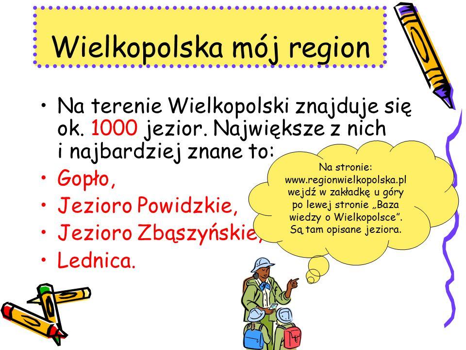 Na terenie Wielkopolski znajduje się ok. 1000 jezior. Największe z nich i najbardziej znane to: Gopło, Jezioro Powidzkie, Jezioro Zbąszyńskie, Lednica