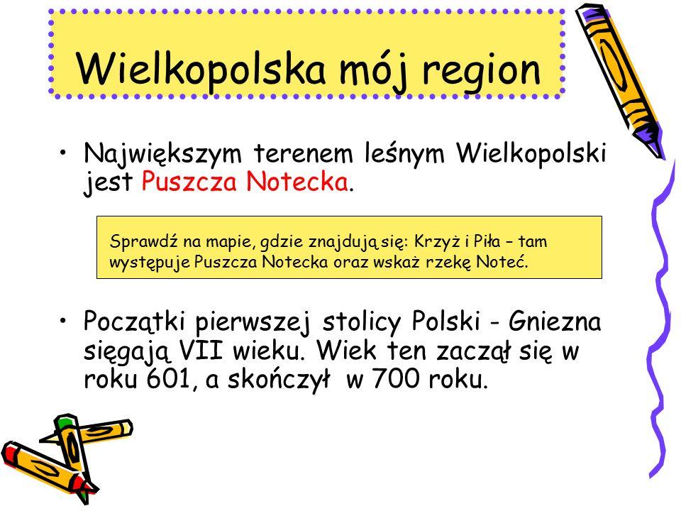 Największym terenem leśnym Wielkopolski jest Puszcza Notecka. Początki pierwszej stolicy Polski - Gniezna sięgają VII wieku. Wiek ten zaczął się w rok