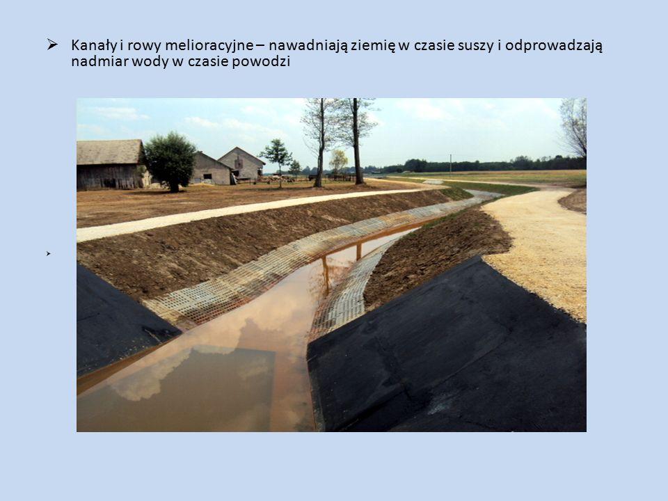  Kanały i rowy melioracyjne – nawadniają ziemię w czasie suszy i odprowadzają nadmiar wody w czasie powodzi 