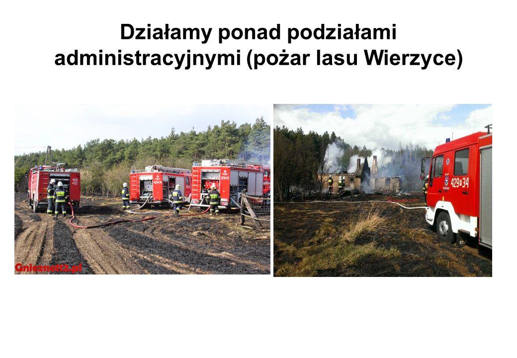 Działamy ponad podziałami administracyjnymi (pożar lasu Wierzyce)
