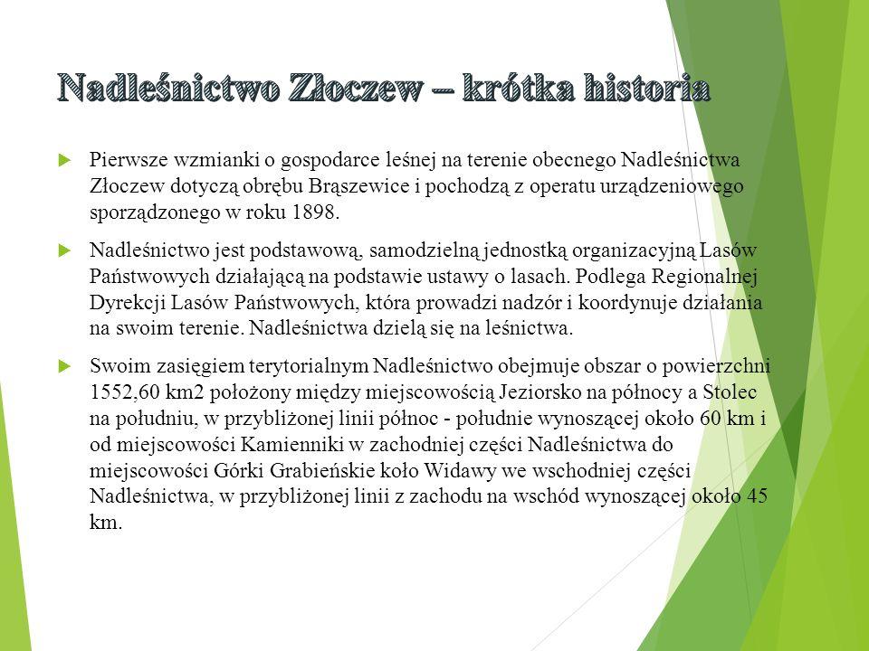  Pierwsze wzmianki o gospodarce leśnej na terenie obecnego Nadleśnictwa Złoczew dotyczą obrębu Brąszewice i pochodzą z operatu urządzeniowego sporządzonego w roku 1898.