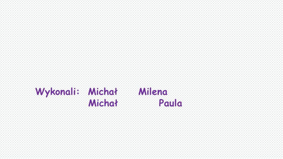 Wykonali: Michał Milena Michał Paula