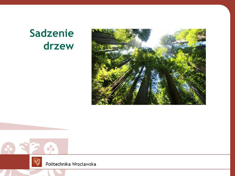 Sadzenie drzew Politechnika Wrocławska