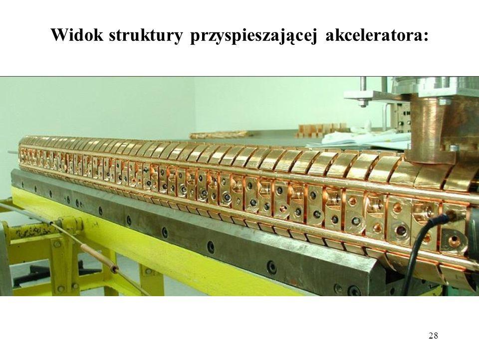 28 Widok struktury przyspieszającej akceleratora: