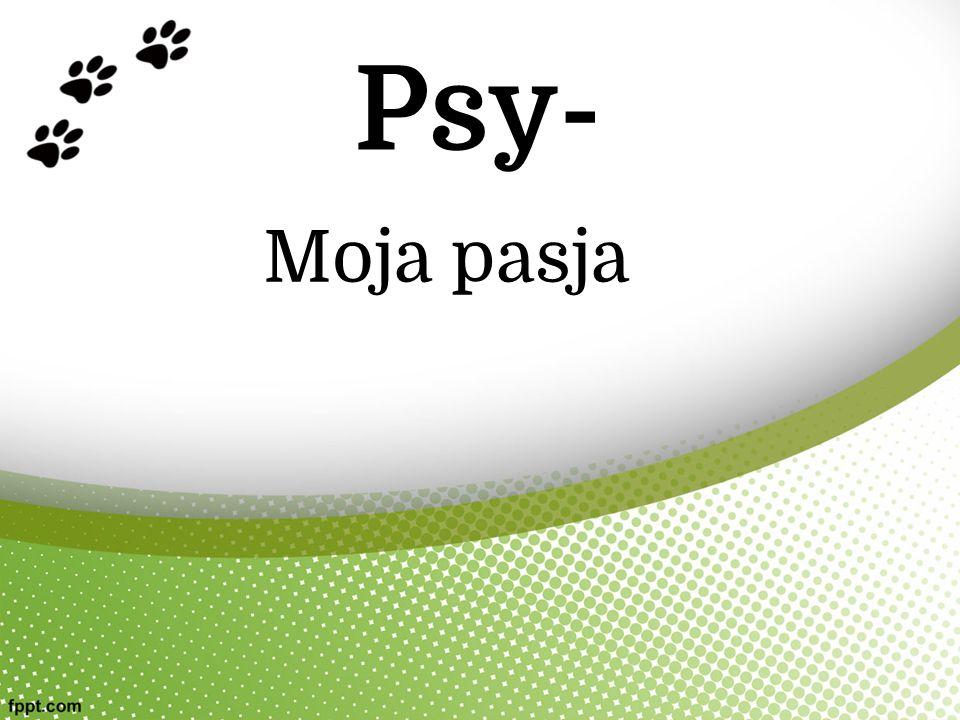Psy- Moja pasja