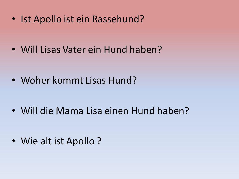 Ist Apollo ist ein Rassehund? Will Lisas Vater ein Hund haben? Woher kommt Lisas Hund? Will die Mama Lisa einen Hund haben? Wie alt ist Apollo ?