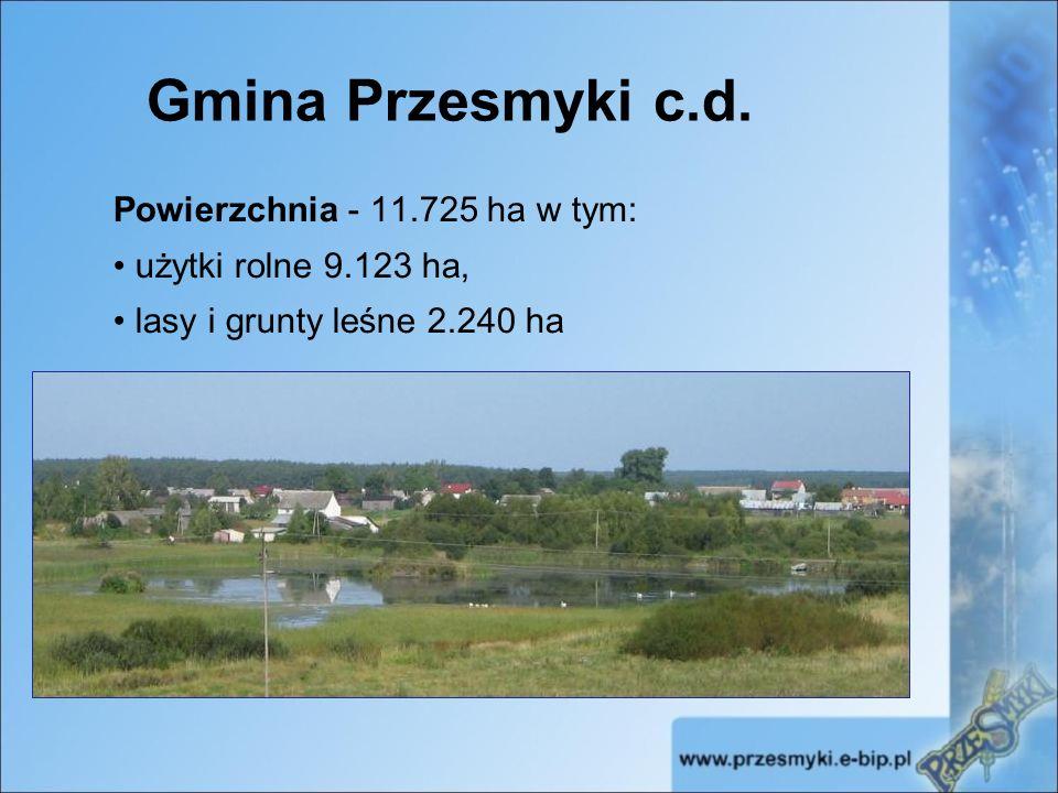 Gmina Przesmyki c.d.Ludność 3699 osób (1856 mężczyzn, 1843 kobiet), słabo zaludniony teren woj.