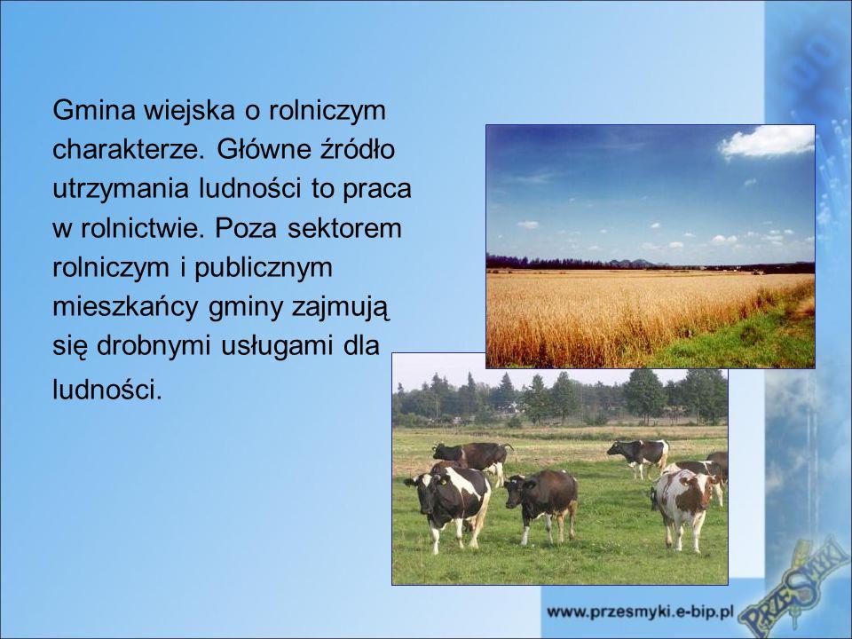 Gmina wiejska o rolniczym charakterze. Główne źródło utrzymania ludności to praca w rolnictwie.