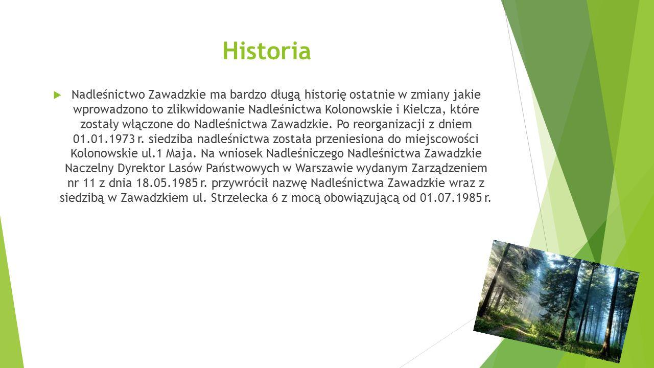 Historia  Nadleśnictwo Zawadzkie ma bardzo długą historię ostatnie w zmiany jakie wprowadzono to zlikwidowanie Nadleśnictwa Kolonowskie i Kielcza, kt