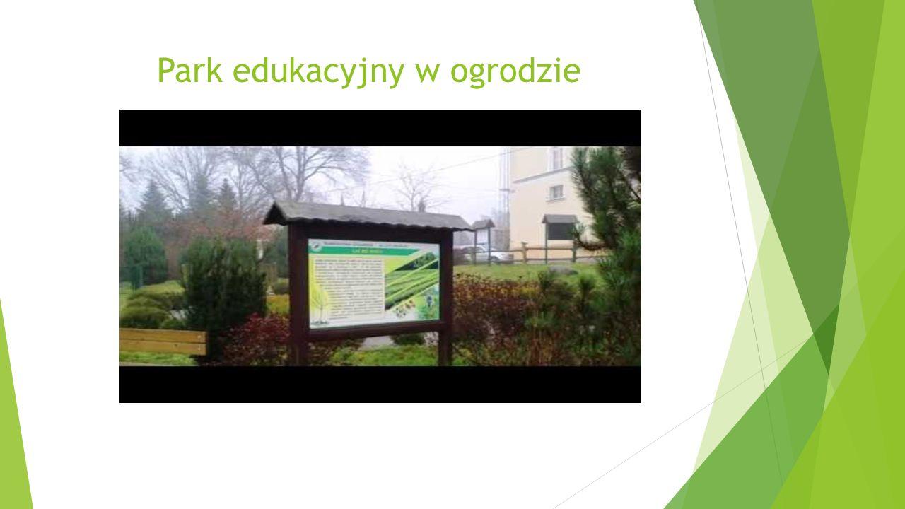 Park edukacyjny w ogrodzie