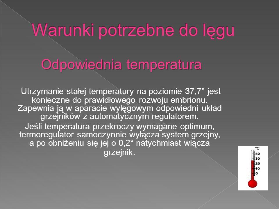 Odpowiednia temperatura Utrzymanie stałej temperatury na poziomie 37,7° jest konieczne do prawidłowego rozwoju embrionu.