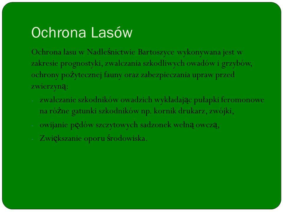 Ochrona Lasów Ochrona lasu w Nadle ś nictwie Bartoszyce wykonywana jest w zakresie prognostyki, zwalczania szkodliwych owadów i grzybów, ochrony po ż