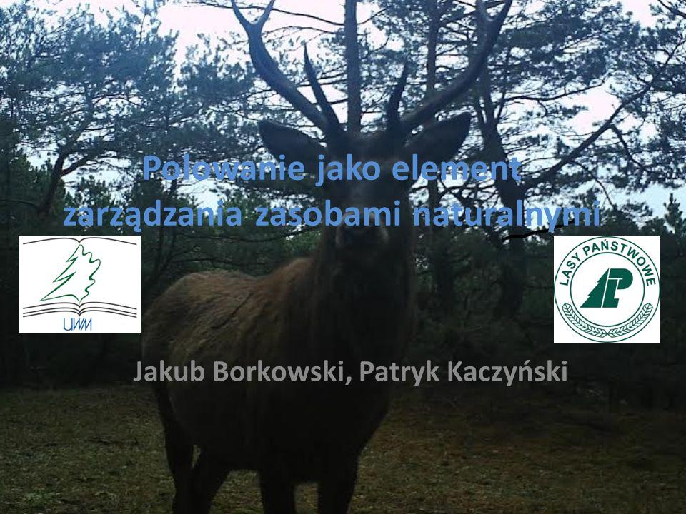 Polowanie jako element zarządzania zasobami naturalnymi Jakub Borkowski, Patryk Kaczyński